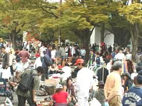 渋谷/代々木公園フリーマーケット2018年2月