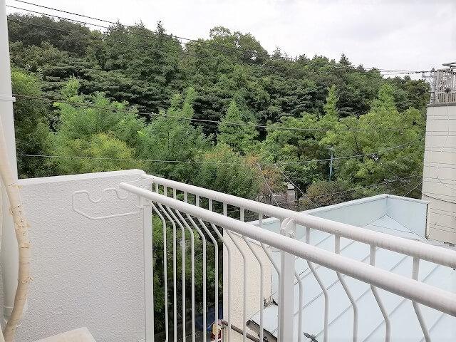 人気の渋谷富ヶ谷!公園沿いの賃貸マンション